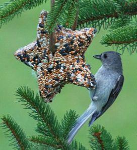 BirdSeedOrnament