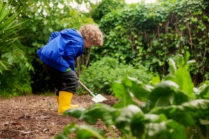 Little boy gardener