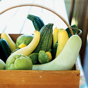 Summer squash in basket